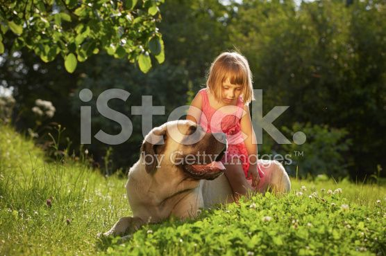 Girl with dog royalty-free stock photo