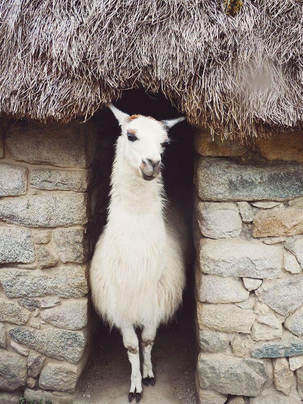 {take me away № 42 : the most beautiful countryside retreats in peru}