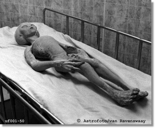 area 51 alien pictures | Resulta que la famosa Área 51 en Nevada NUNCA realizó trabajos ...