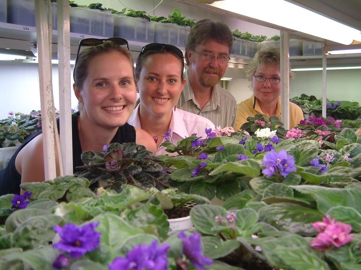 The African Violet Farm nursery is well worth a visit, so pop in to Tumut Valley Violets and see the entire range then enjoy a cuppa at the garden cafe