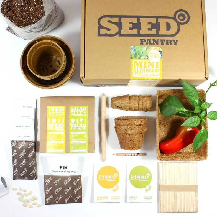 Allotment Kit From Seed Pantry At Not On The High Street Best Wedding GiftsWedding