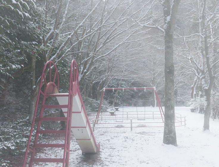 Park treesparkforestwintersnowtree