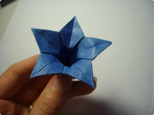 Origami flower from a pentagon.  Photo diagrams for this and a few others.