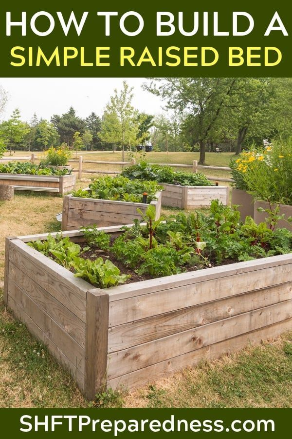 How To Build A Simple Raised Bed Shtfpreparedness Building Raised Garden Beds Raised Garden Raised Garden Beds Diy