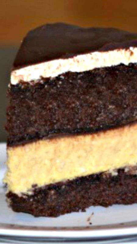 Chocolate Pumpkin Cheesecake Recipe