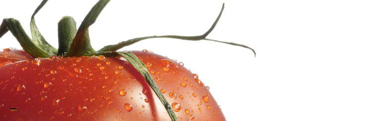 Szkło z motywem NOLTE - pomidor