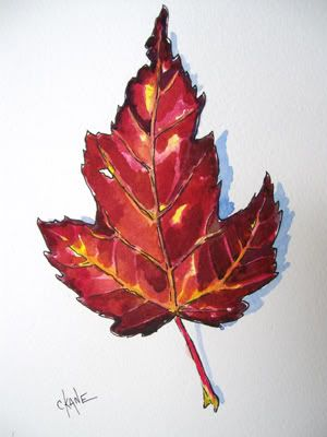 Let's Paint an Autumn Maple Leaf!Step by step directions for painting watercolor leaves.
