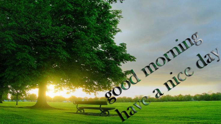 good wedsday pics | Good Morning green good morning hd wallpapers – World HD Wallpapers  #bobproctor  #bobproctorquotes  #kurttasche