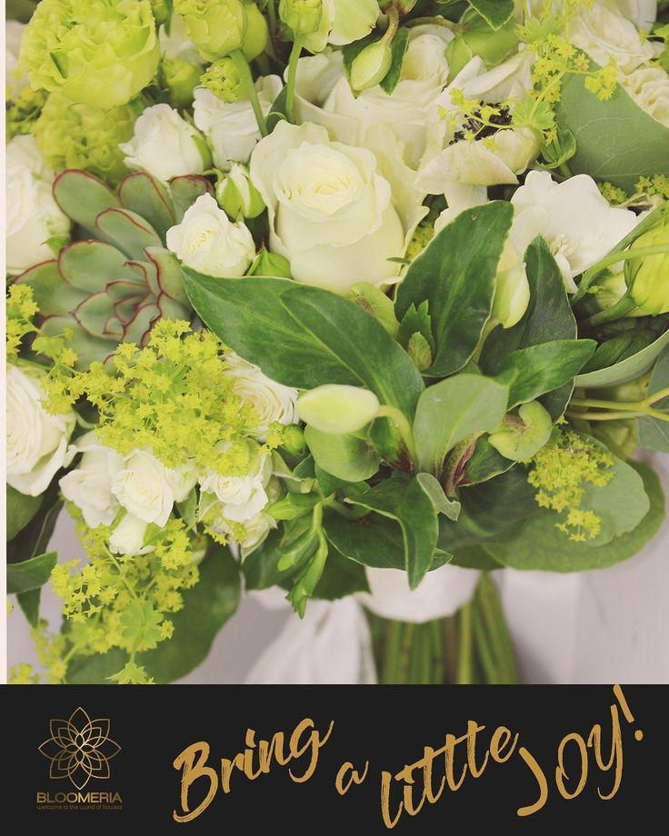 bloomeria.ro Cadourile neasteptate sunt cele mai tari surprize, mai ales intr-o zi ploiasa! Trimite flori pentru un zambet!