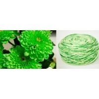 100% Merino Yarn - mixed dyed