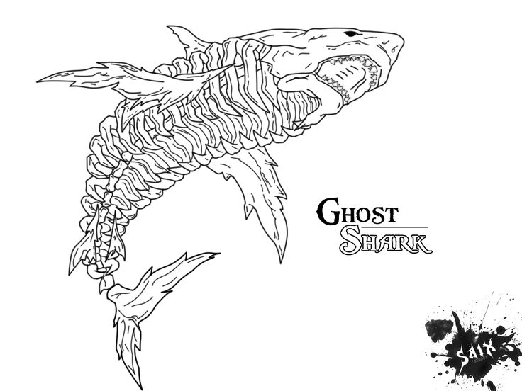 Pin by Tyler Morrison on Label Ideas Shark coloring