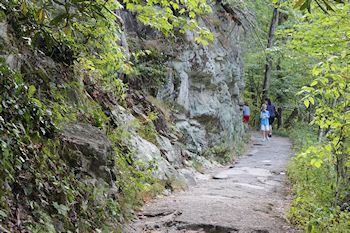 Best hiking trails in smoky mountains smokies for kids and toddlers easy trails