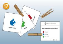 Quiz Cards for the Squirrel Lapbook for children. More lapbook resources available at www.kigaportal.com!