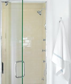 How To Get Rid of Shower Mold.   One Good Thing by Jillee