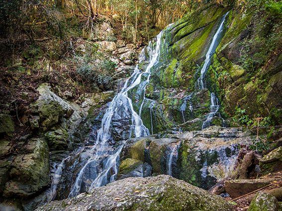 Waterfall. Skeleton Gorge