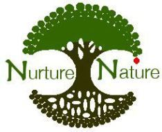 Top 16 Safe and Effective SPF Sunscreen Skin + Makeup Products in U.S. – EWG Recommended   NURTURE NATURE PROJECT