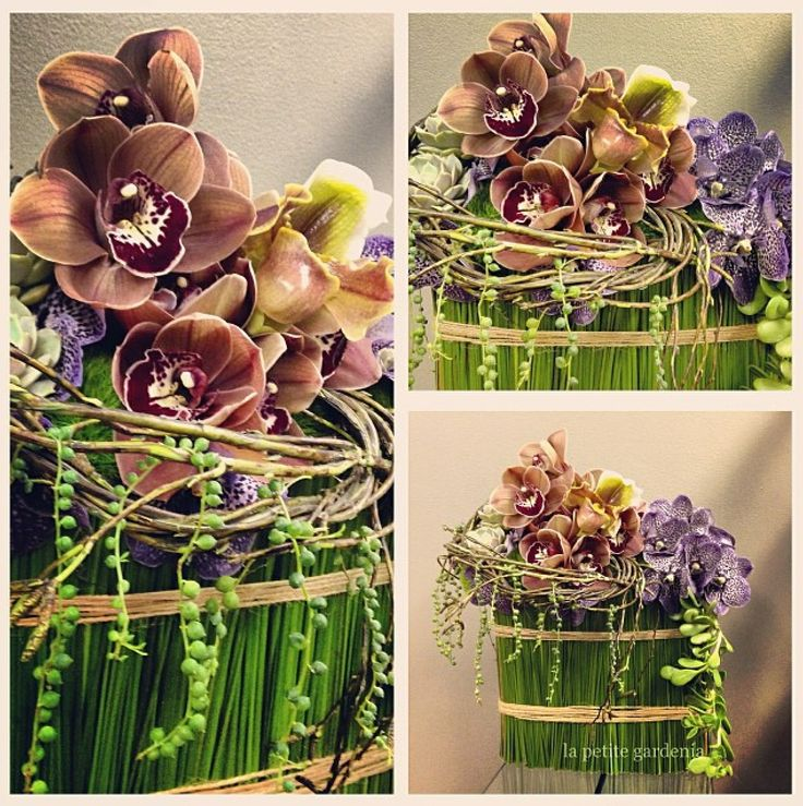 74 best beautiful cymbidium flower arrangements images on Christmas orchid arrangements