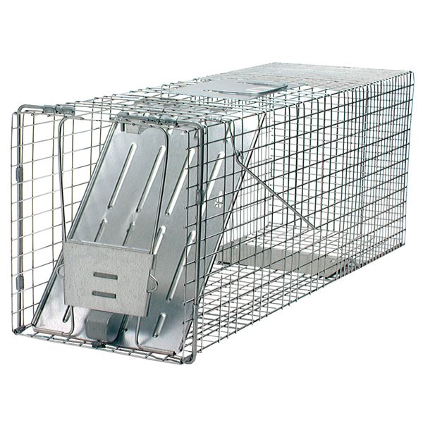 Single door trap is ideal for Armadillos  Raccoons  Woodchucks (Groundhogs). Easy to bait  set and release  this high tensile wire mesh trap is steel reinforced for long life and maximum resistance to damage. The smooth inside edges are for the protection of the animal  while the spring-loaded door has sensitive triggers to ensure a quick  secure catch. This model comes fully assembled and is 32x10x12.