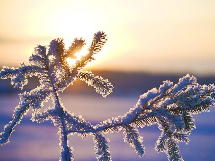 #Umzug im #Winter – #Umziehen in der Kältesten der vier Jahreszeiten - #Halle #Leipzig #Merseburg #Deutschland