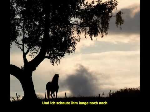 Funny van Dannen, Unbekanntes Pferd with lyrics - YouTube