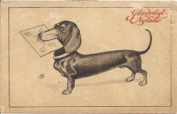Vintage Dachshund postcard by Alfred Schmidt on qxl.dk