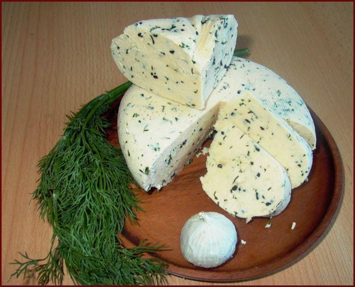 Домашний сыр с укропом и чесноком.