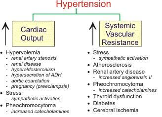 Hypertension. #Comorbidities