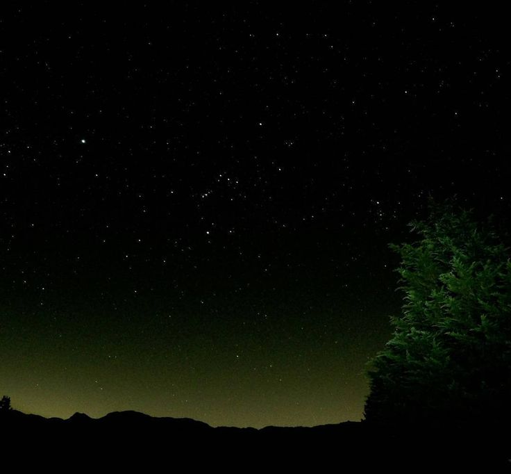 On instagram by andrelopzlo #astrophotography #unas (o) http://ift.tt/1RRLgyg noche del 4 de enero de este año bisiesto (04-01-2016) !!! #Nikon_photography #Stars #Photographerslife #NightPhotography#nightphoto  #Astrophotography #ClearSky #Noche #Night #January #Wednesday #DarkSky #DarkNight #Photography #Nikon #Landscapes #Tree #Nature #Forest #Silhouette #Shadows #Caldas #Colombia #GaleriaCO #Colombiando #2016 #Loves_camera