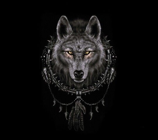 Wolf Iphone Wallpaper: 17 Best Images About Fondos On Pinterest