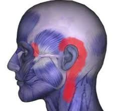 Various conditions can cause torment behind the ear and down the neck. As per MedlinePlus, https://www.naturalhealthscam.com/need-know-sharp-ear-pain/ a production of the National Institutes of Health, neck torment can go to different parts of the body, for example, the shoulder, arm and head. Now and again, torment in different head structures can send torment to the neck. Agony behind the ear is frequently connected with neck torment, as the ligaments of many neck muscles embed into the…