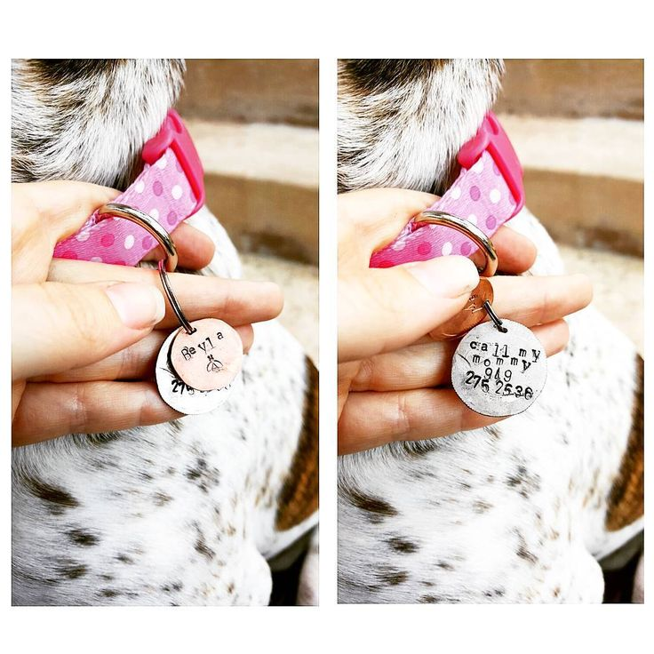 Personalized dog tags #dogs #custom #personalized #dogtags #coins