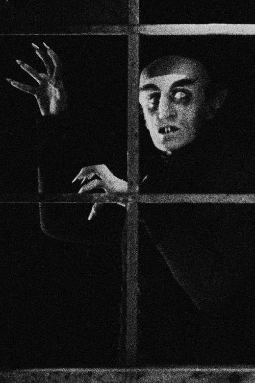 Nosferatu (1922)   me   Pinterest