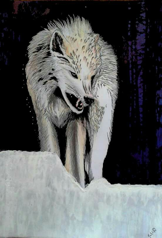 WOLF by JuhVik
