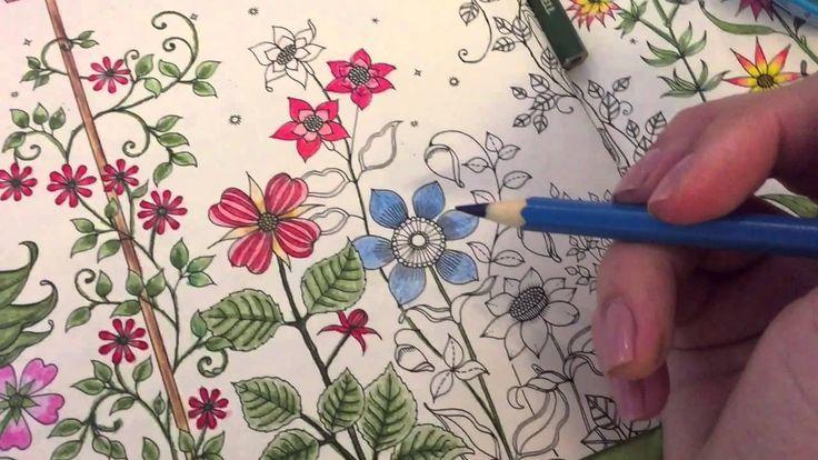 flor azul jardim secreto : flor azul jardim secreto:1000+ images about JARDIM SECRETO dicas on Pinterest