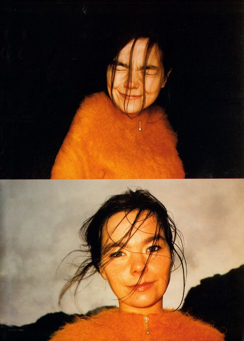 Bjork. iconoclast who stayed true to her vision and stayed relevant