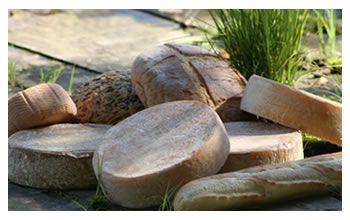 Fromagerie Le P'tit Train du Nord, située à Mont-Laurier, vous convie, au gré de vos goûts et de votre curiosité, à découvrir nos produits. Tous ceux qui ont eu la chance de goûter à nos fromages savent d'ores et déjà qu'ils sont exceptionnels.