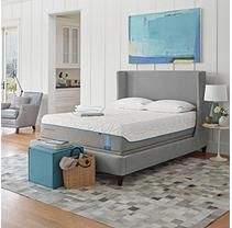 Tempur-Pedic Tempur-Cloud Elite California King Mattress Low Profile Set