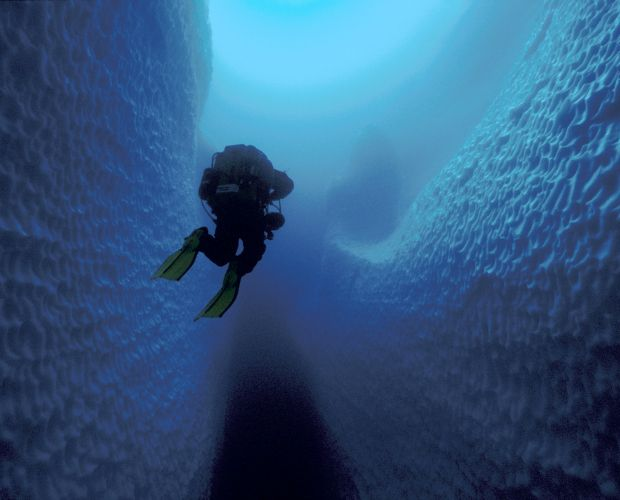 The Best Cave Diving Ideas On Pinterest Island Of Malta - An alien world lurks beneath in this creepy cave diving video