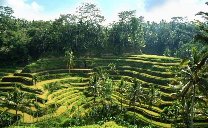 Bali & Gili Inseln – Individuell entdecken - Rundreisen Indonesien   Reiseangebote SZ