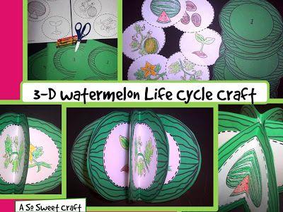 3-D Watermelon Life Cycle craft   -- watermelon festival craft fun