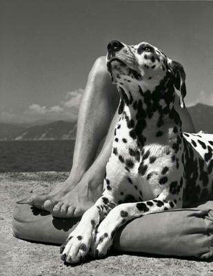 Master and Dog | 1936