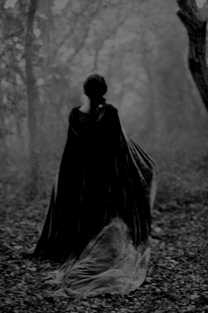 ~ gloomy forest ~