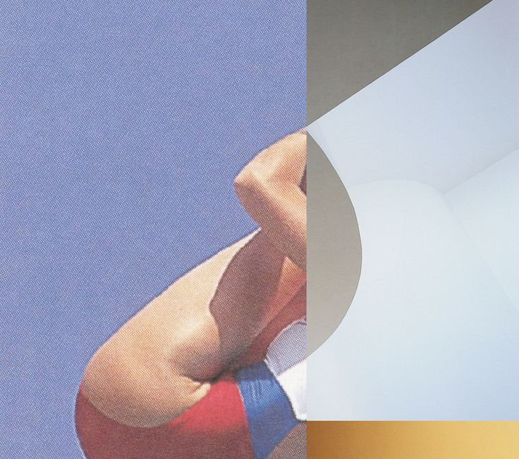 Zoe Croggon, Swan, 2015, C-type print, 80 x 90 cm, at Daine Singer, Melbourne