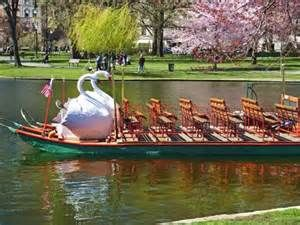Swan Boats of Boston | Boston | Tourist Attractions & Sightseeing ...