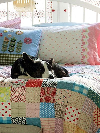 Love the corgi, and look at that quilt! - I think this pic is from Posie Gets Cosy blog