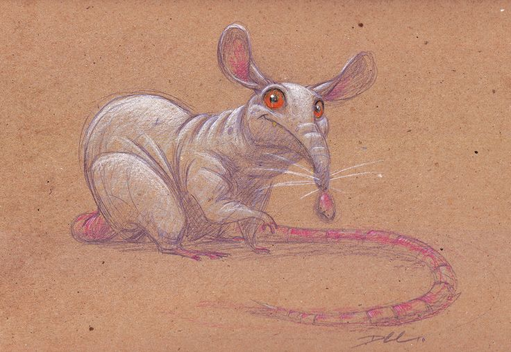 The Art Of Character Design With David Colman Download : Images about creature design rats mice on