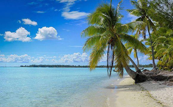 Playa Paraíso - Cayo Largo (Cuba)
