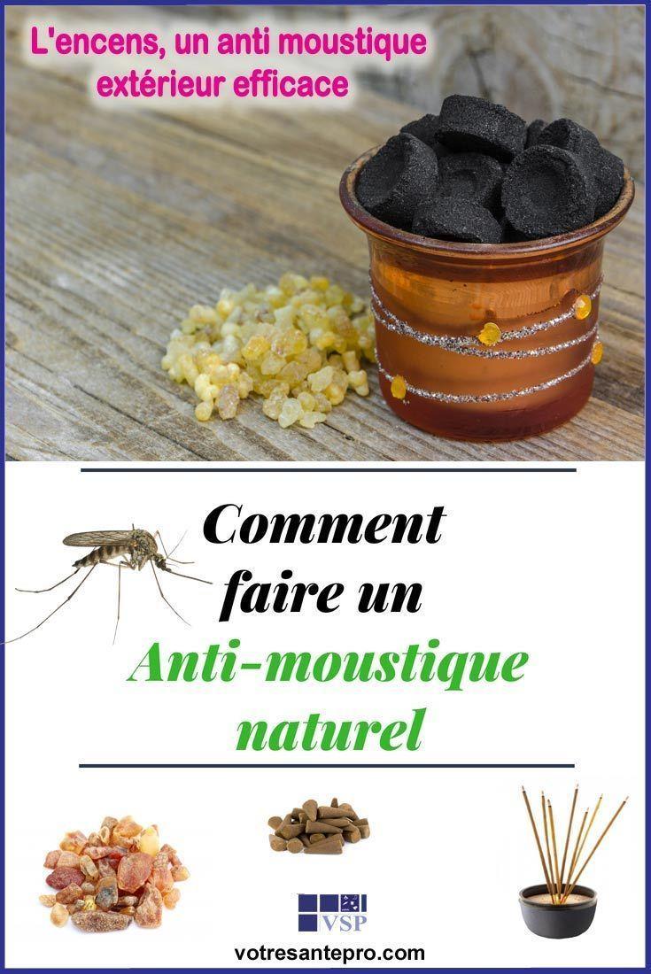 Anti Moustique Exterieur Idees