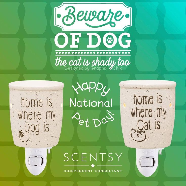 Pin by jamie haag on Scentsy in 2020 Scentsy, Scented