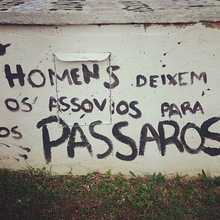#Repost @jamiivs ・・・ UFSC, SC. #ufsc #olheosmuros #artederua #arteurbana #pixo #streetart #SC http://ift.tt/2dJB5Ay